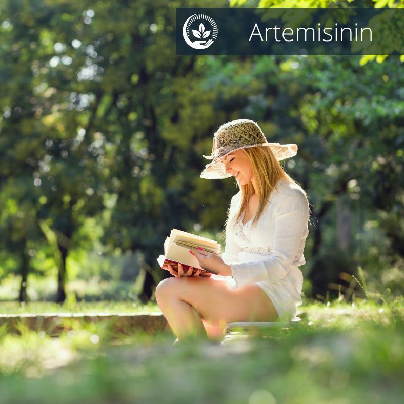 Artemisinin IV Therapy Alternative Cancer Treatment Springfield Missouri